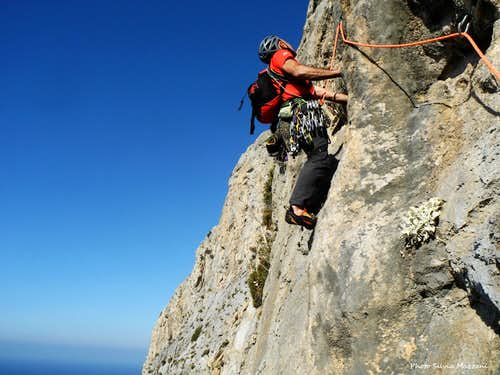 Traverse on Wings for Life, Telendos