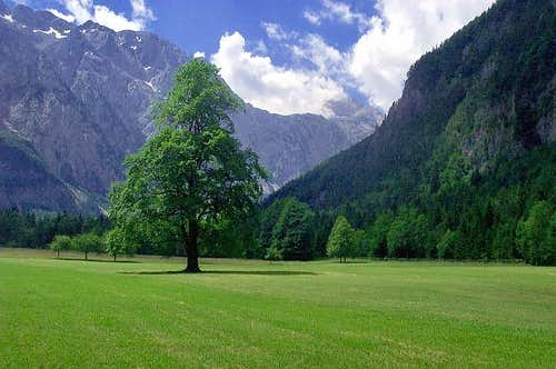 The Logarska valley
