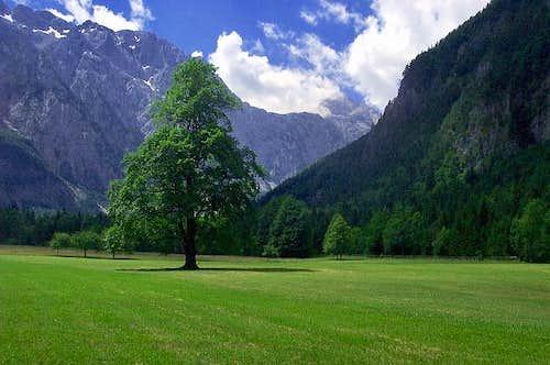 The Logarska valley  ...