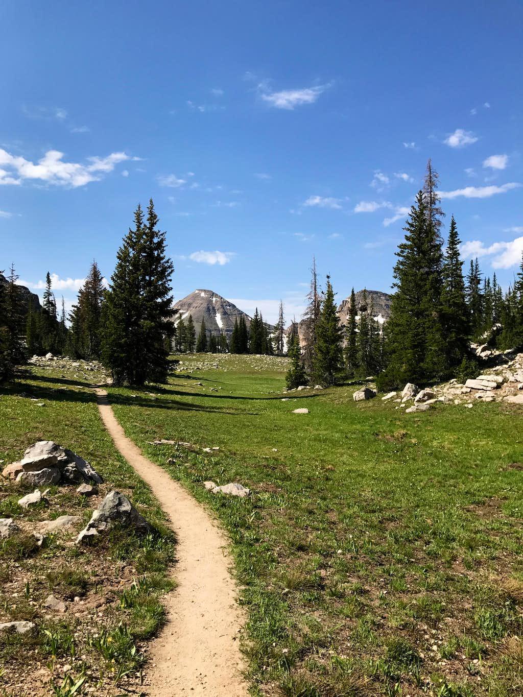 Trail between Lofty Lake and Kamas Lake. 2017