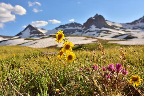 Summer in Ice Lakes Basin