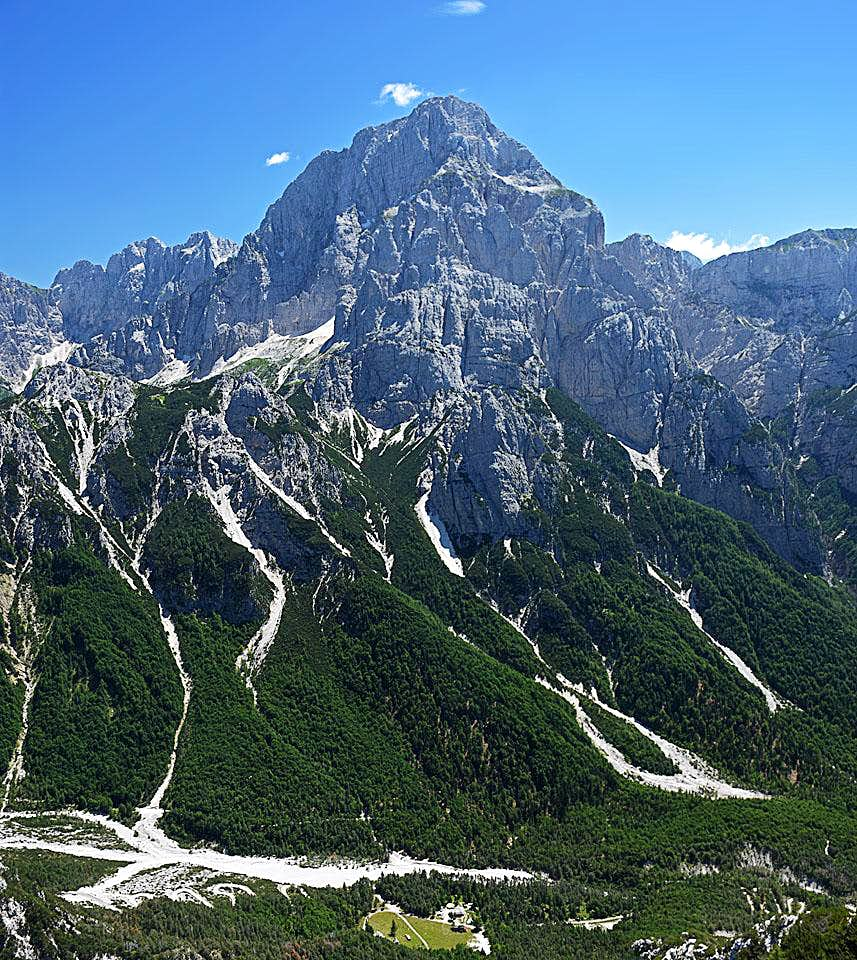 PHOTO OF THE DAY