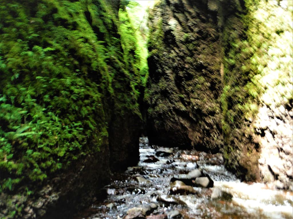 Narrow Passage - Kadunce Canyon