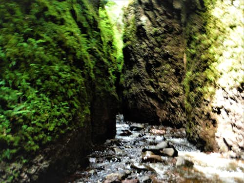 Narrow Passage - Kadunce Canyon