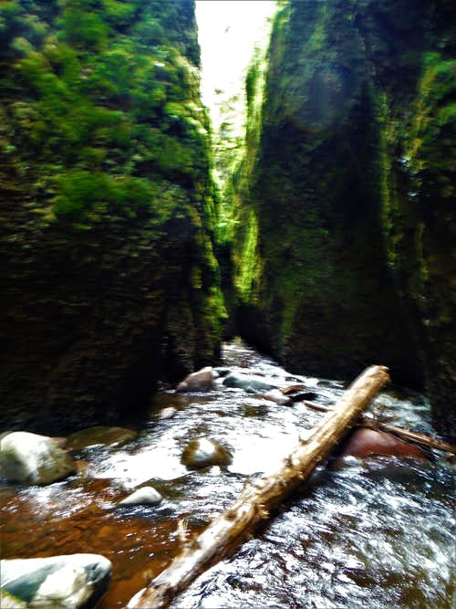 Narrow Passage - Kadunce Canyon 2