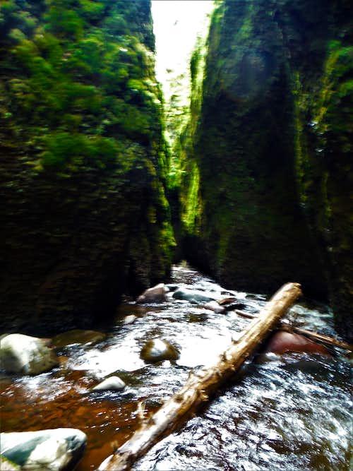 Narrow Passage - Kadunce Canyon 2