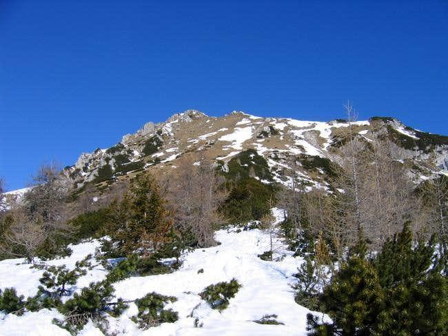 The upper slopes of Visevnik...