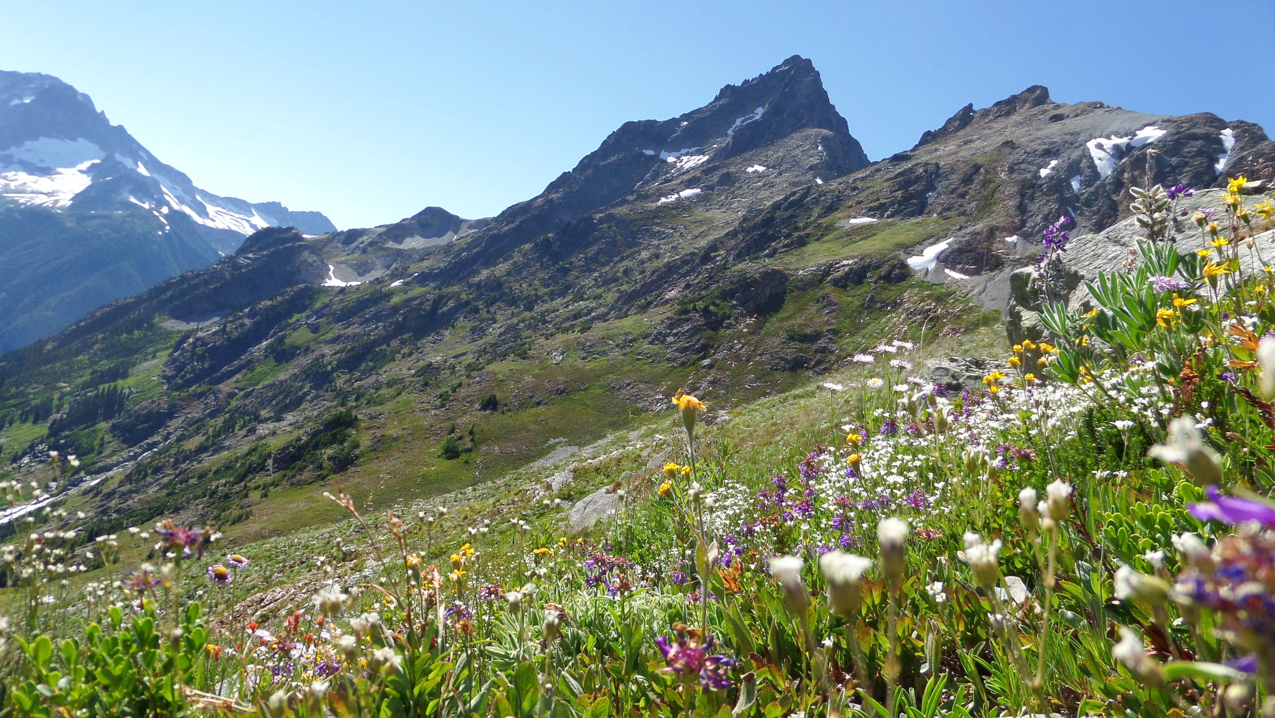 Ragged Ridge Traverse