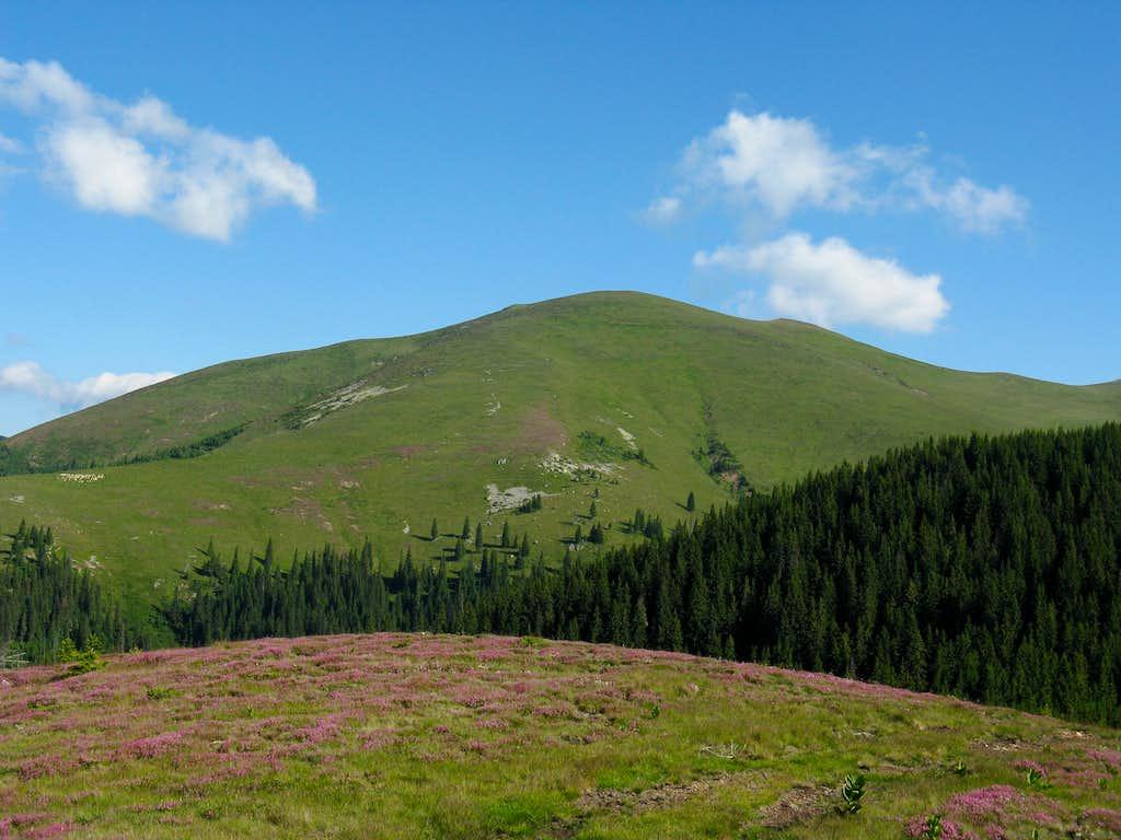 Capatana summit (2097m)