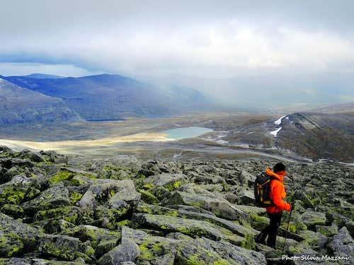 Dovrefjell landscape
