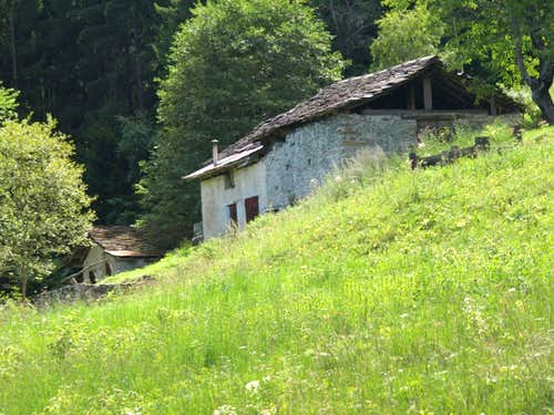 Le Pieiller-de-Sermoz Alp <i>(1075m)</i> under Le Plany  2017
