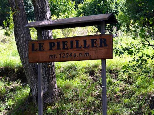 Nearby the Pieiller Alp <i>(1234m)</i> in Pieiller Vallon 2017