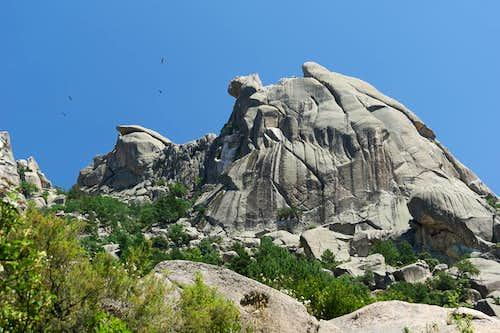 Vultures soaring above granite domes