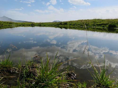 Stinky pond