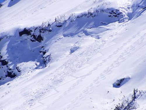 Avalanche runout with various...