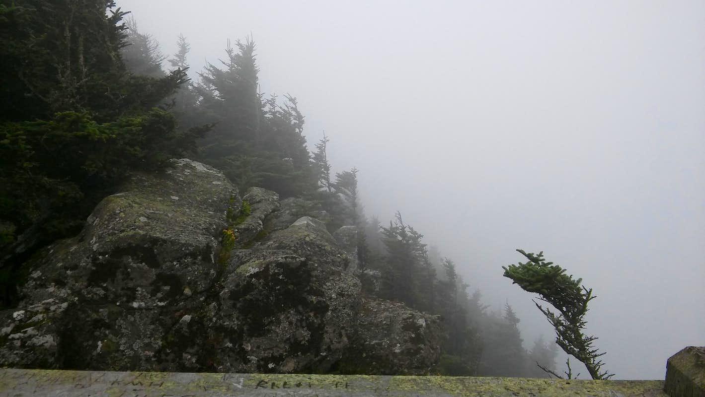 Roan High Bluff Climbing Hiking Amp Mountaineering