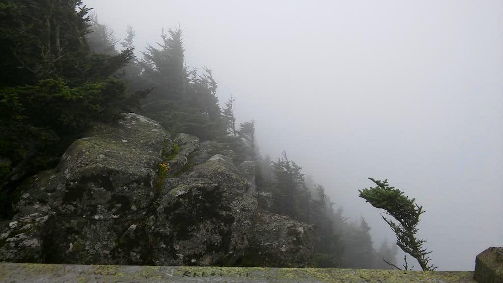 Roan High Bluff Overlook in Clouds