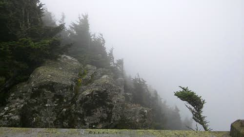 Roan High Bluff Overlook in Clouds