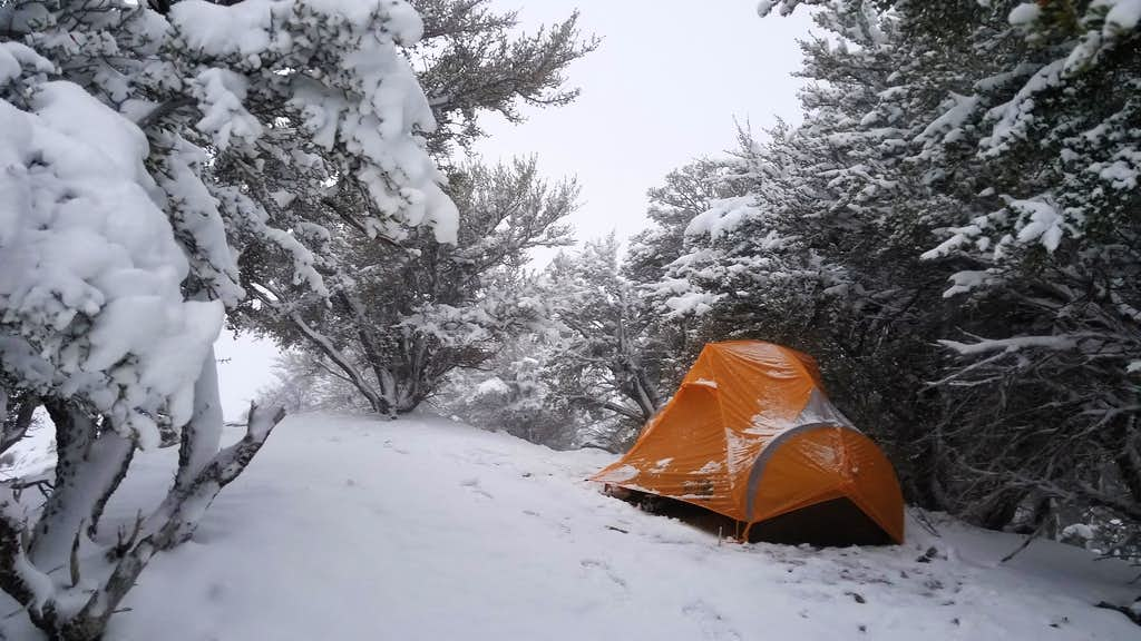 Camp at approximately 7500 feet in Loan Peak area.