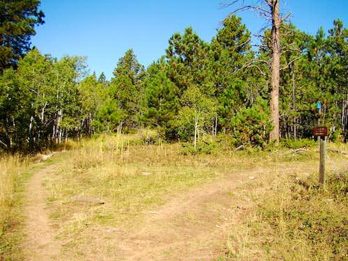 Loop Trail Fork