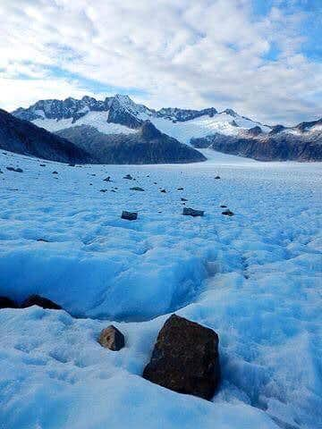 Earnest from Herbert Glacier