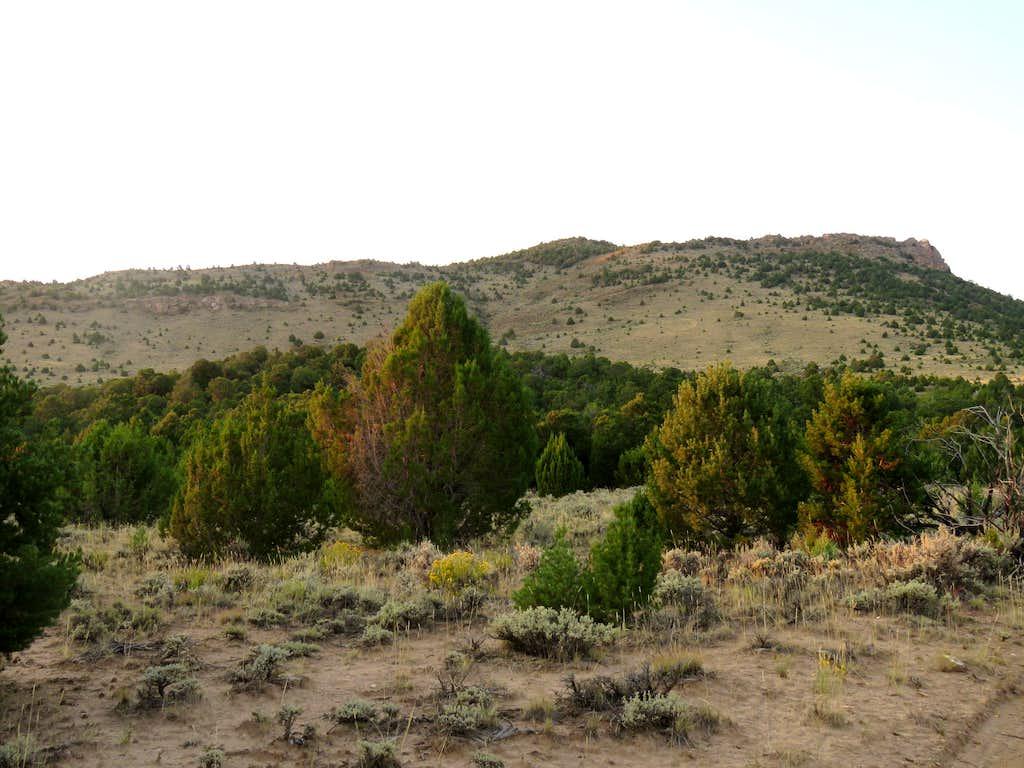 North slopes of Bear Top Mesa