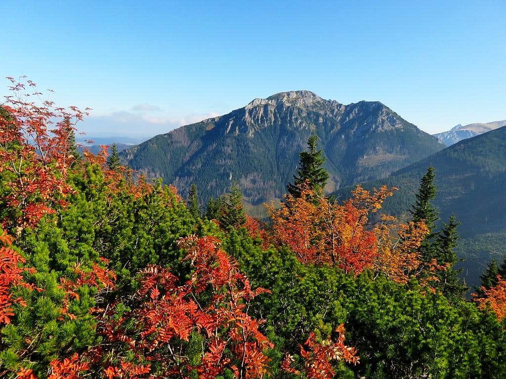 Fall colors with Kominiarski Wierch