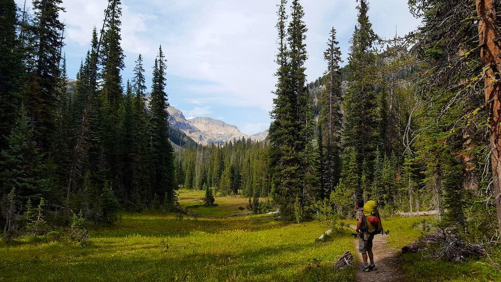Granite Peak - Meadow