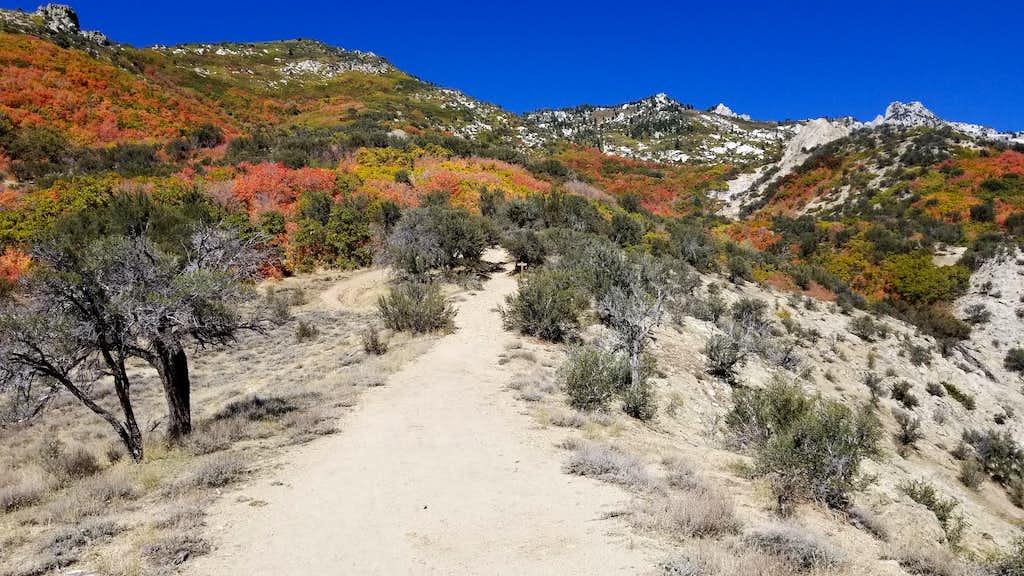 A fall scene while departing Lone Peak via Jacob's Ladder.