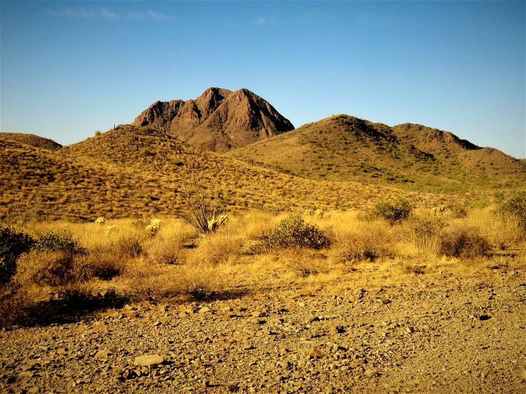 Gavilan Peak from the trail to Daisy Mountain