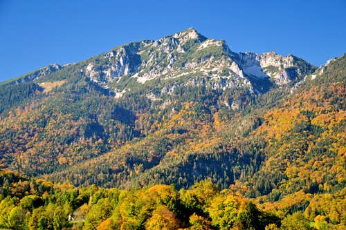 The south side of Zwiesel in golden autumn