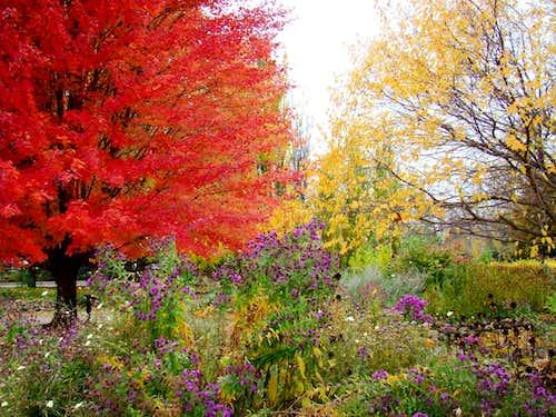 South Dakota Autumn Color
