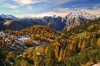 Larch paradise in the Berchtesgaden Alps