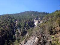 Derrumbada Roja forest