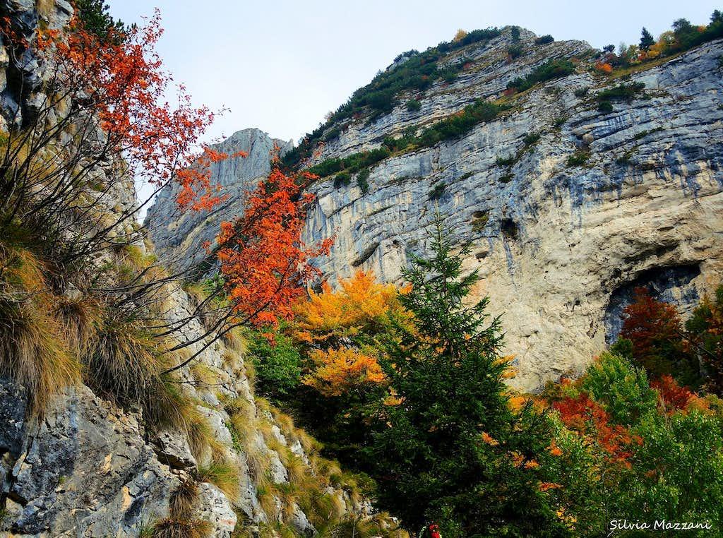 Autumn scenery on the way to Corno Battisti