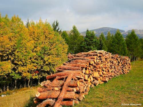 Autumn on Monte Spil