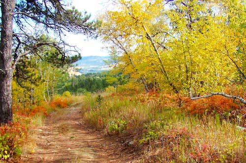 Autumn Serenity on Mt. Roosevelt