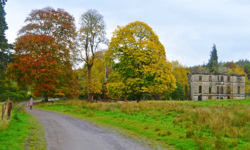Autumn colours at the Guisachan ruin