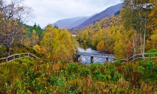Glen Affric in autumn