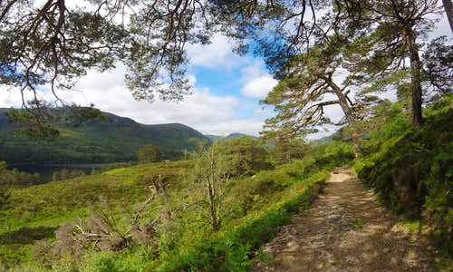 Path on the northern bank of Loch Affric