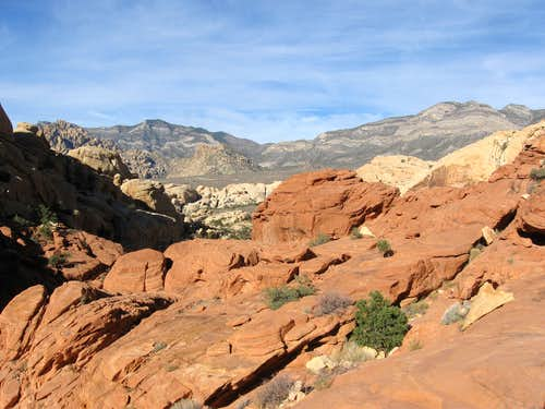 Looking West From the Calico Hills