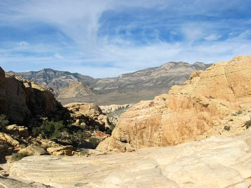 View West From Near Calico Tanks