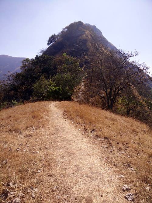 Trail up to the rock face
