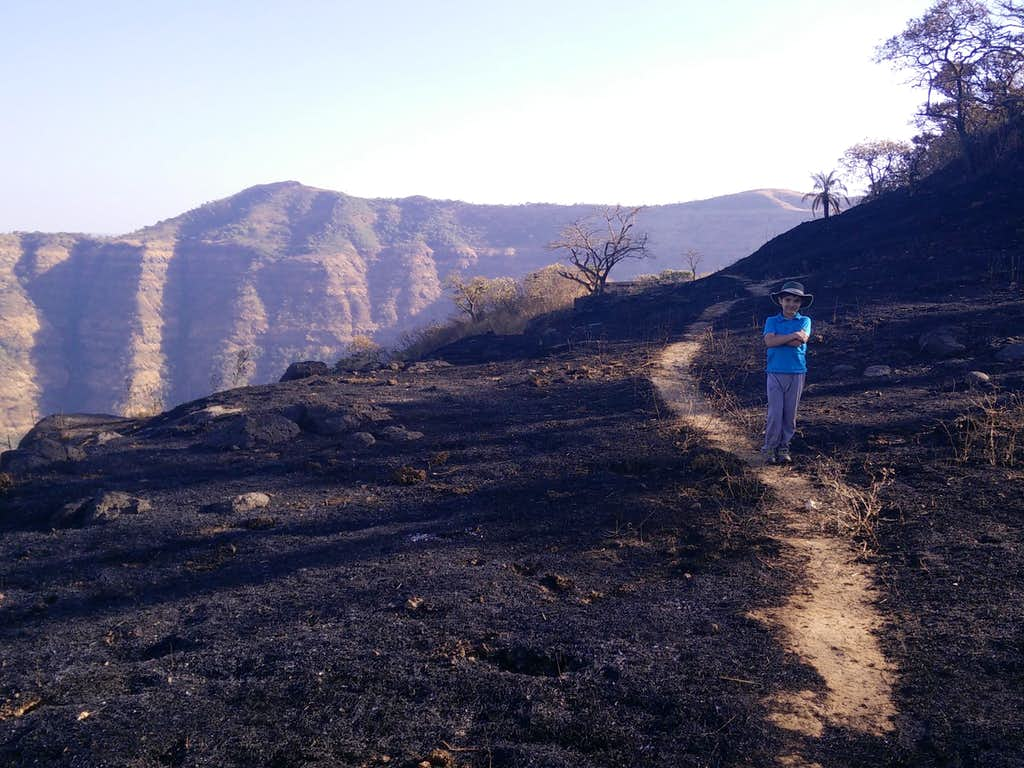 Trail towards Shivling