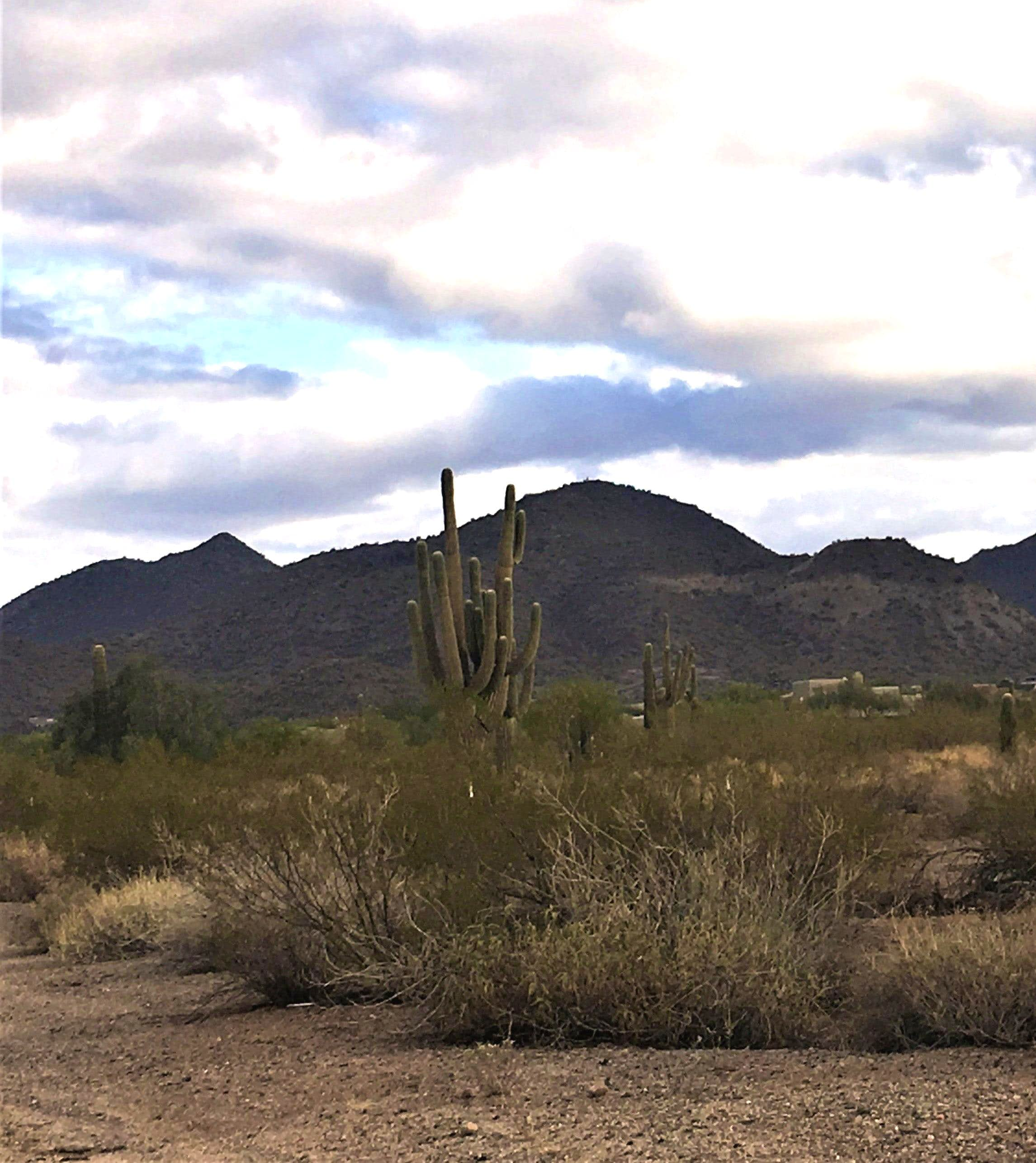 Usery Mountain South