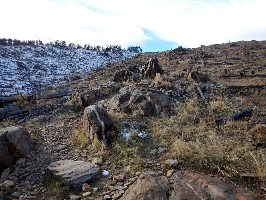 Bobcat Ridge