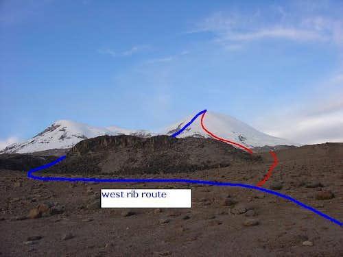 W rib route