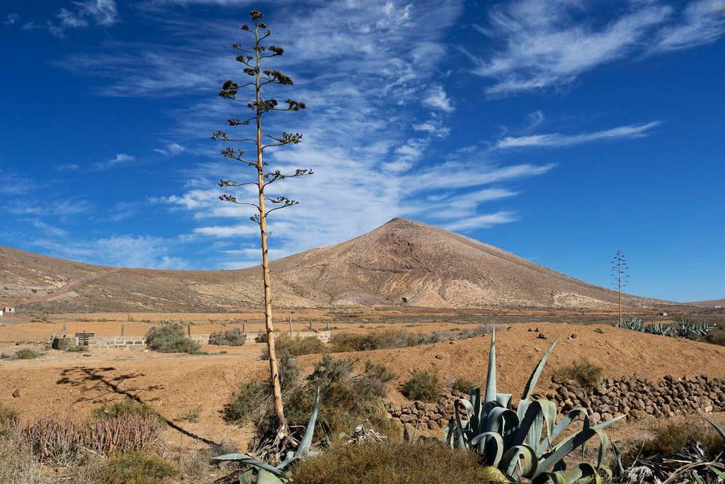 Montaña de San Andres