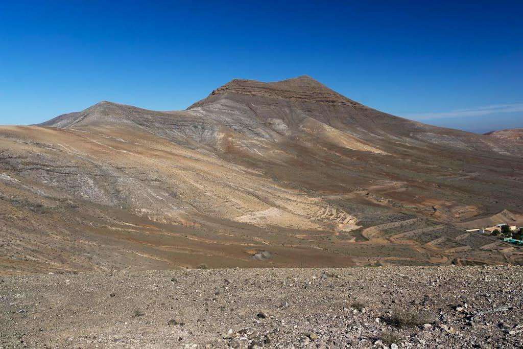 Cerro de Aceitunal