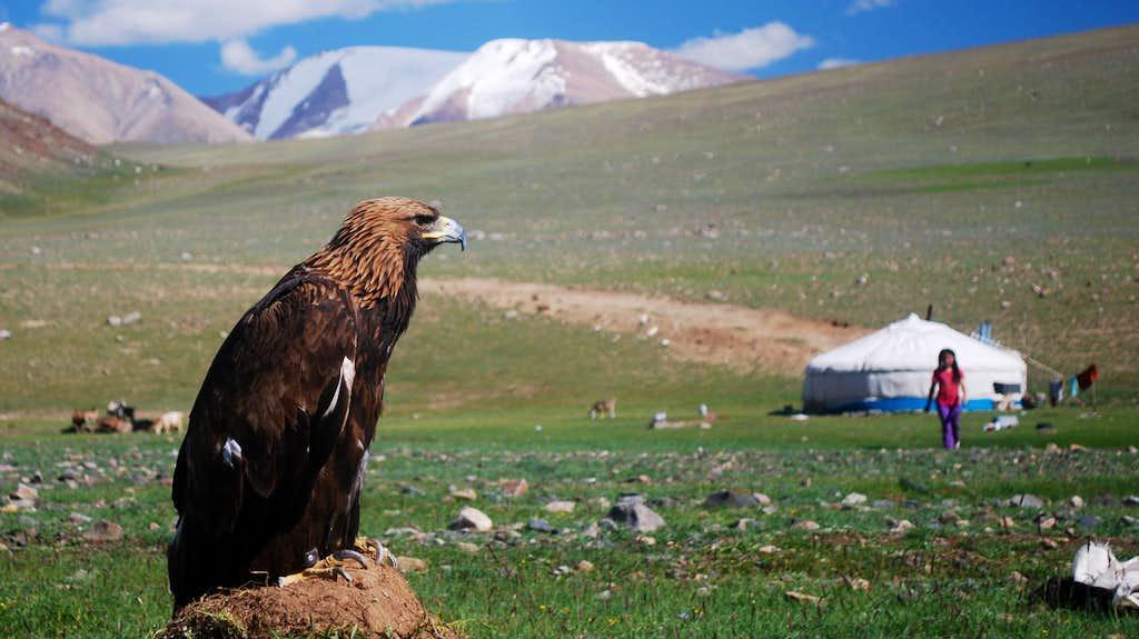 Western Mongolia, a Land of Kazakh Eagle Hunters